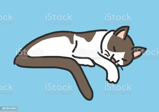 Cute cat cartoon hand drawn line drawing vector illustration vector id824844934?b=1&k=6&m=824844934&s=612x612&h=jx1i0gssxu9n32izyqtjlyqo cqmeumkc5sq31ant40=