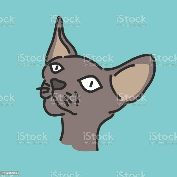 Cute cat cartoon hand drawn line drawing vector illustration vector id824845330?b=1&k=6&m=824845330&s=612x612&h=dmdz9crpp1izjrg9auj z jtazlcug8hwcaqywvr1kk=