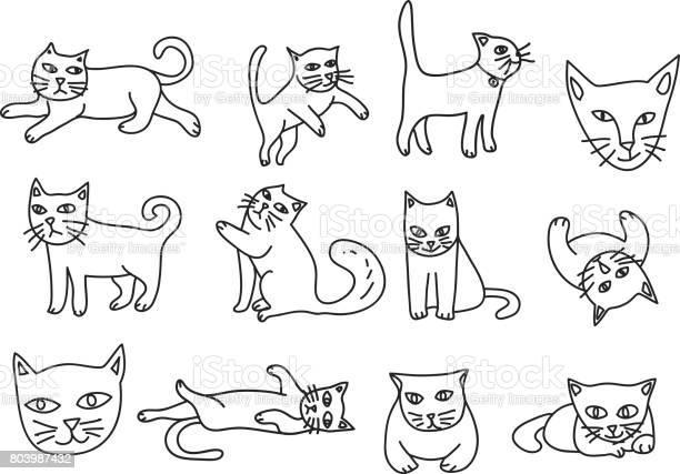 Cute cat hand drawn icon vector set line art illustration vector id803987432?b=1&k=6&m=803987432&s=612x612&h=xuf wh 9zte4naer1b6uwe b ovc0mq8abbh6arqbrc=