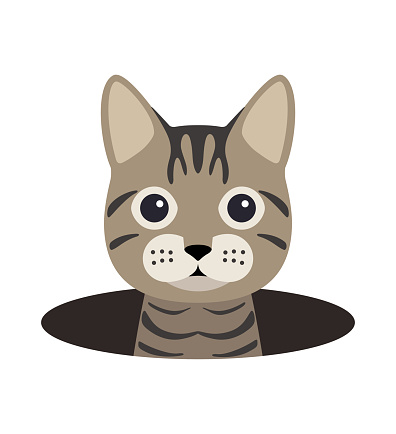 cute cat on the cave,watching, vector illustration