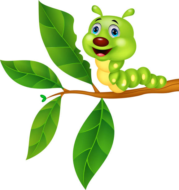 stockillustraties, clipart, cartoons en iconen met cute caterpillar cartoon eating leaf - zijdeworm