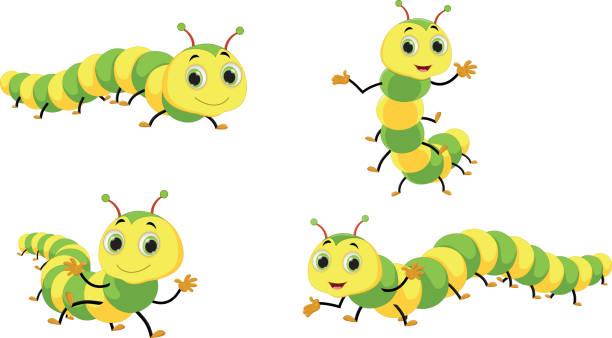 stockillustraties, clipart, cartoons en iconen met schattig caterpillar cartoon - larve