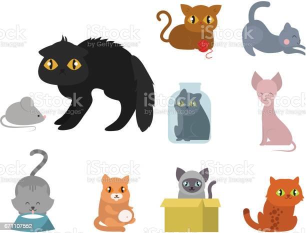 Cute cats character different pose funny animal domestic kitten vector id671107552?b=1&k=6&m=671107552&s=612x612&h=b piisgkbwe rjckt6vansbrjuruwtc1cblpdlugkqu=