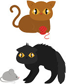 Cute cats character different pose funny animal domestic kitten vector illustration