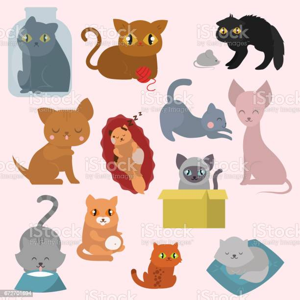 Cute cats character different pose funny animal domestic kitten vector id672701694?b=1&k=6&m=672701694&s=612x612&h=n syvxvlwyfc63mi9fzpcrauifl9pa mqd2plckogda=