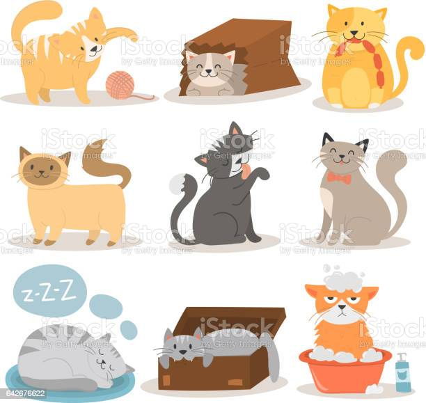 Cute cats character different pose vector set vector id642676622?b=1&k=6&m=642676622&s=612x612&h=lyst2llbht6olv0cawffhxy3skae012spvwrcxugary=