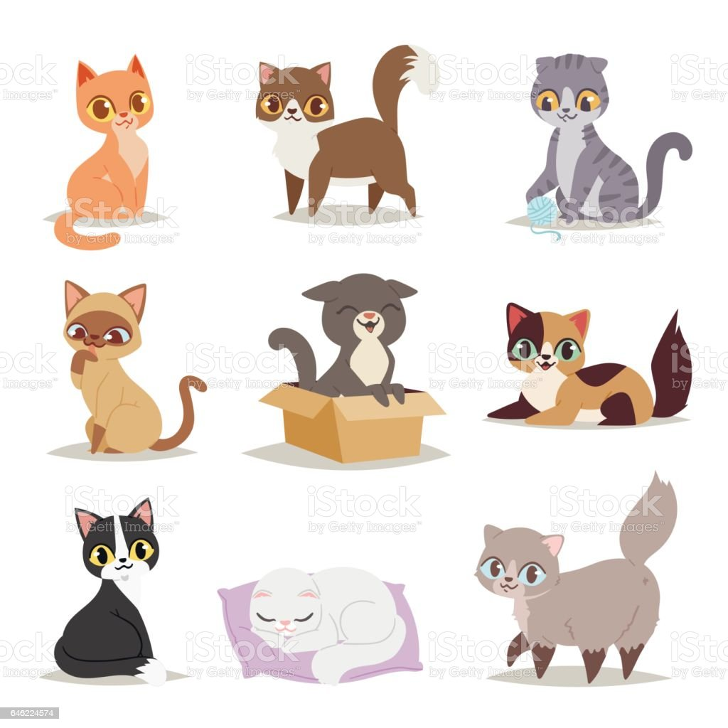 Cute cats character different pose vector vector art illustration