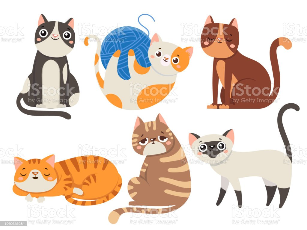 Cute cats. Fluffy cat, sitting kitten character or domestic animals isolated vector illustration collection cute cats fluffy cat sitting kitten character or domestic animals isolated vector illustration collection - immagini vettoriali stock e altre immagini di allegro royalty-free