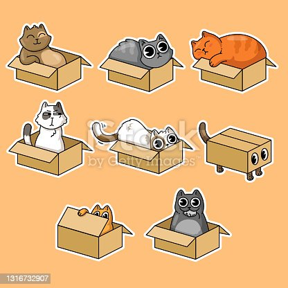 Cute cats in boxes stickers collection for t-shirt design