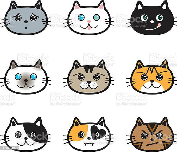 Cute cats in various colors breeds expressions vector id173704372?b=1&k=6&m=173704372&s=612x612&h=  owszbwx upfpemd 4lbp8msqunva9npl0iovgnqiq=
