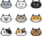 Cute Cats in various colors, breeds & expressions