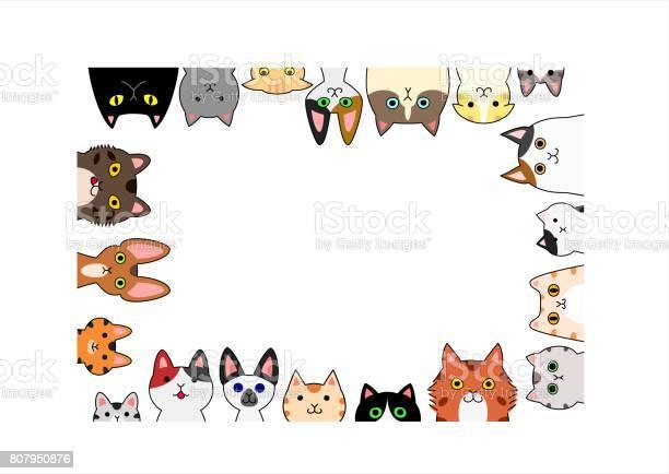 Cute cats rectangle frame vector id807950876?b=1&k=6&m=807950876&s=612x612&h=7ozbumkt4x3c093ubgcvaffswph62lz j2ae9qxinia=