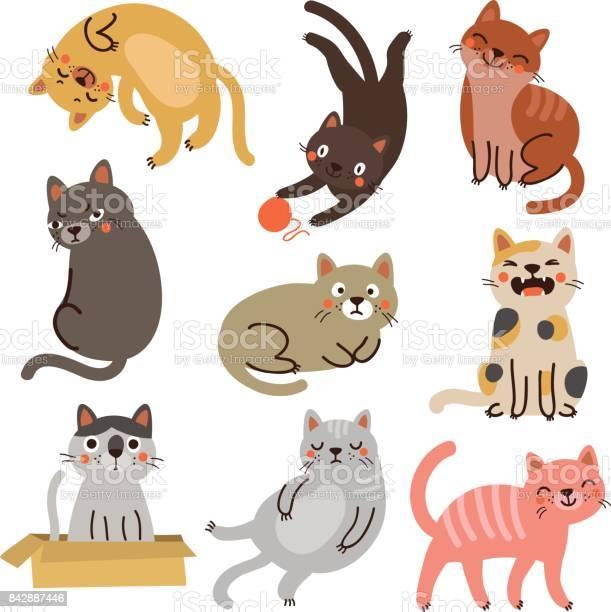 Cute cats vector id842887446?b=1&k=6&m=842887446&s=612x612&h=vjciti76gdvb6cpv75rfqh9wxohxfdvczr3udncrlpq=