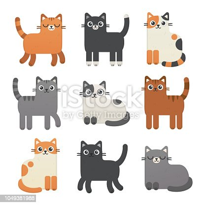 Kittens of different colours: calico, tabby, red, gray, black