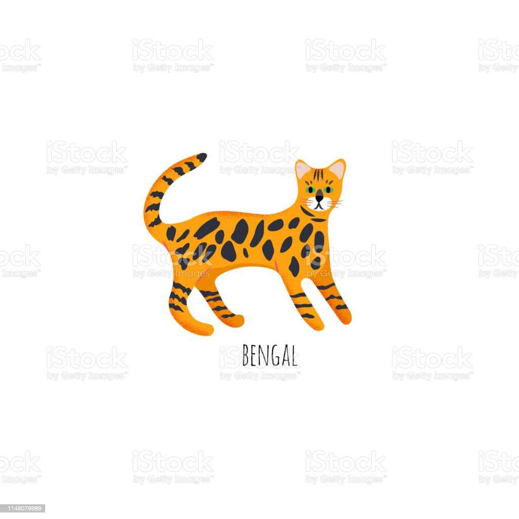 Cute character cartoon style of cat. Icon of bengal breed for...