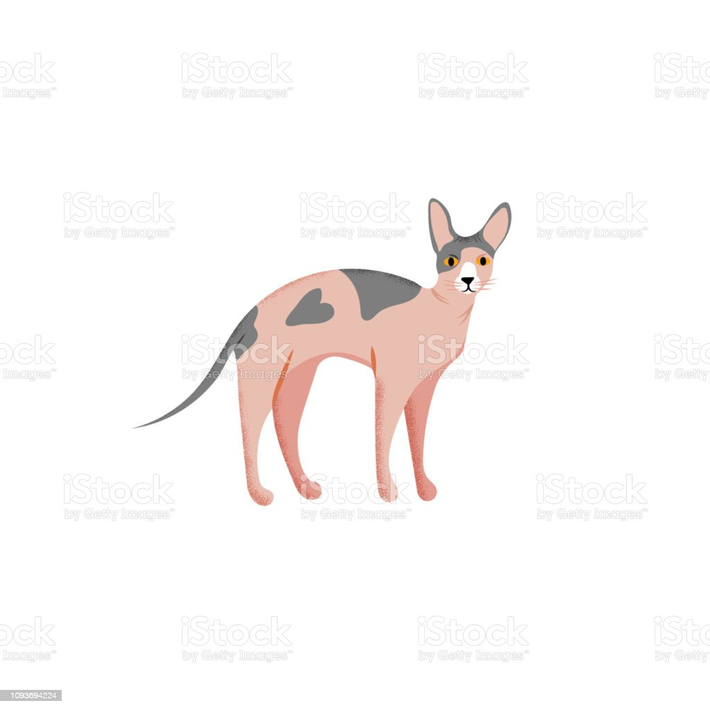Vector illustration. Cute character cartoon style of cat. Icon of...