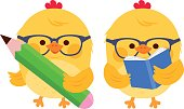 Cute chick students reading and writing