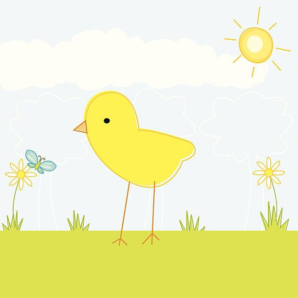 Cute Chick with Butterfly A little chick on a sunny day hanging out with a butterfly in a sketchy style. Download contains Illustrator CS2 ai, Illustrator 8.0 eps, and high-res jpeg. kathrynsk stock illustrations
