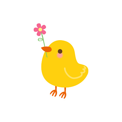 Cute chick with flower isolated on white background.