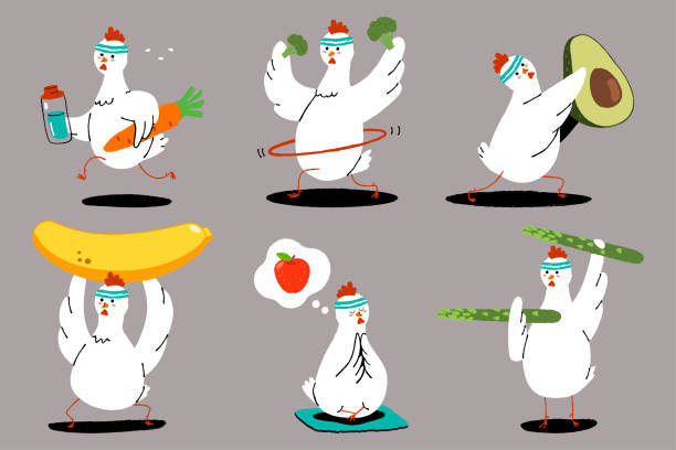 Cute chicken doing exercise. Healthy food and fitness. Funny birds with fruits and vegetables cartoon characters vector set. Chicken, food, fitness vector cartoon character set. chicken bird stock illustrations