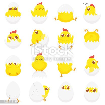 Cute chicken in egg. Easter baby chick, newborn chickens in eggshell and farm kids chicks. Chicken bird in cracked eggs. Isolated cartoon vector illustration icons set