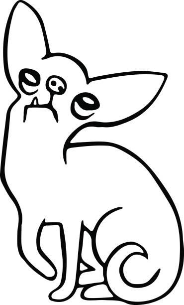 niedliche chihuahua hund. vektor-illustration. - hundehaarbögen stock-grafiken, -clipart, -cartoons und -symbole