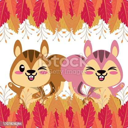 cute chipmunks animals characters vector illustration design