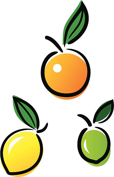 Cute Citrus vector art illustration