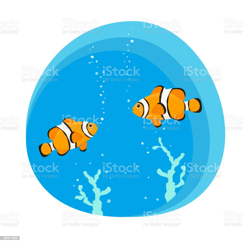 Cute clown fishes on blue background. royalty-free cute clown fishes on blue background stock vector art & more images of anemonefish