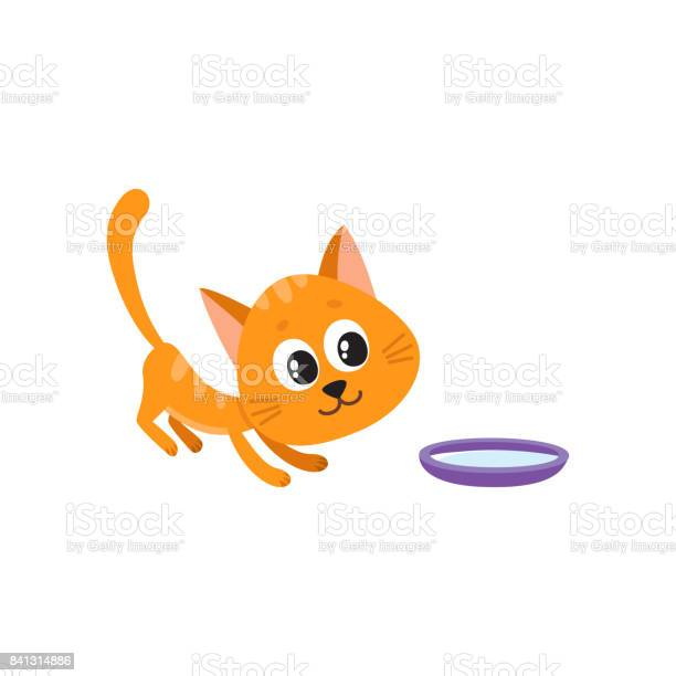 Cute comic style red cat and bowl of milk vector id841314886?b=1&k=6&m=841314886&s=612x612&h=ged 8kmpcrtjienxzyk5k7bjcbmcjgl9jp8ftwgq64q=