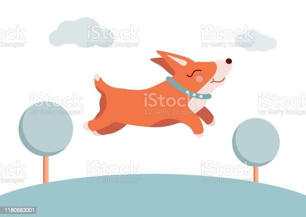 Cute corgi dog for a walk vector illustration vector id1180663001?b=1&k=6&m=1180663001&s=612x612&h=uninq2xip9ff1diwrrhzviwbsmdhealfghkwcyjugjy=
