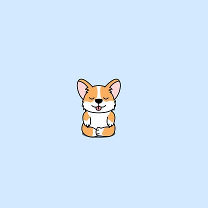 Cute corgi dog practicing yoga, vector illustration