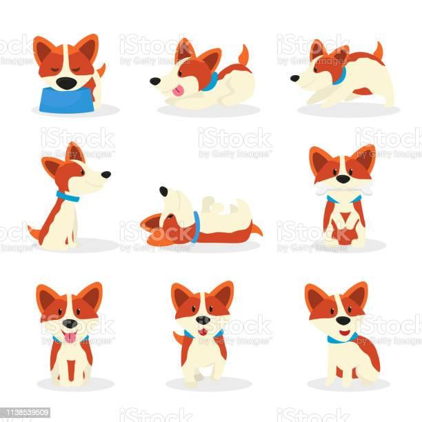 Cute corgi dogs color vector illustrations set vector id1138539509?b=1&k=6&m=1138539509&s=612x612&h=79eiiptoujaqlkisdljznmzeuwzd3zfu0vnbw9o 2km=