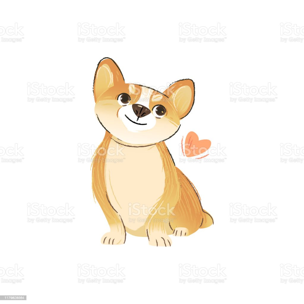 Cute Corgi Puppy In Love Cartoon Welsh Dog Breed Animal Pet Drawing With Pink Heart Stock Illustration Download Image Now Istock