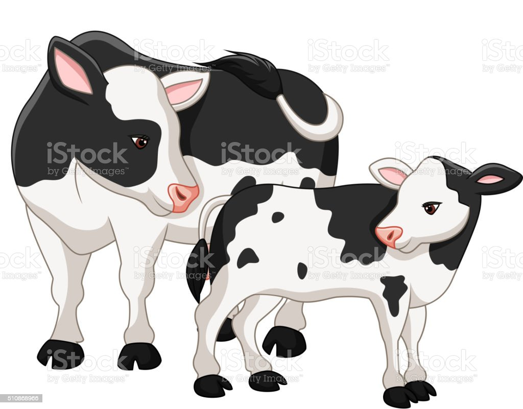 Cute cow mother with baby calf vector art illustration