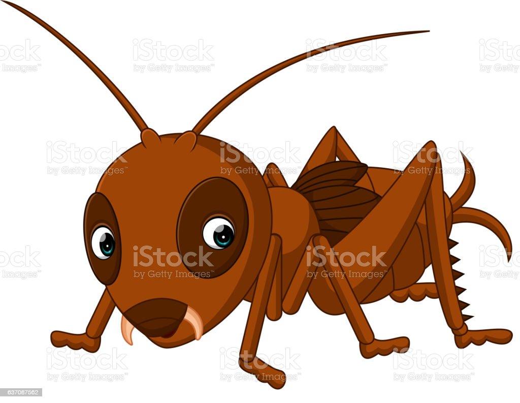 Cute cricket cartoon vector art illustration