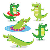 Cute Crocodile character sets on white background, vector illustration