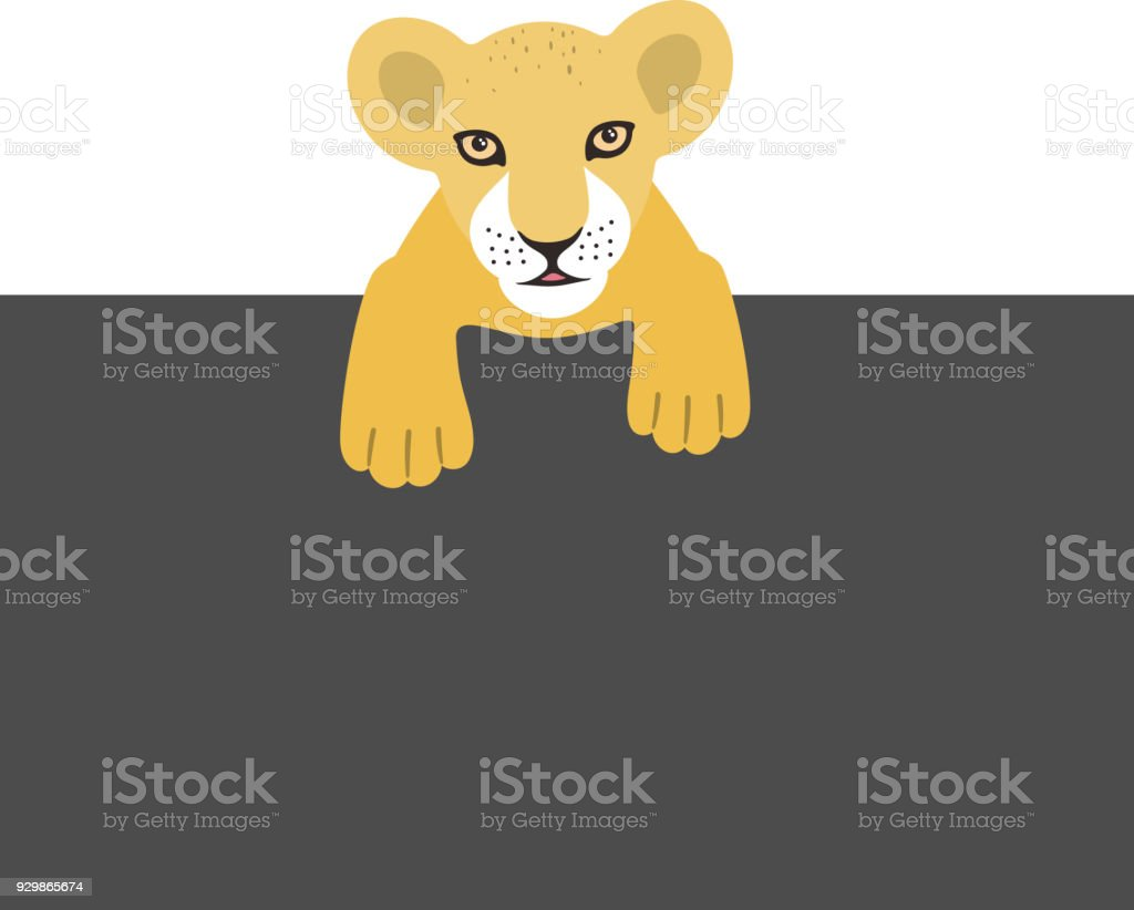 Süße Junge Löwe Liegend An Die Tafel Vektorillustration Stock Vektor ...