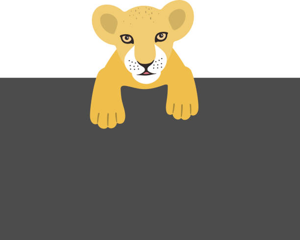 49 Cartoon Of A Lion Lying Down Illustrations Royalty Free Vector Graphics Clip Art Istock Learn how to draw lion lying down pictures using these outlines or print just for coloring. 49 cartoon of a lion lying down illustrations royalty free vector graphics clip art istock