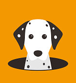 cute Dalmatian dog on the hole,watching  vector illustration