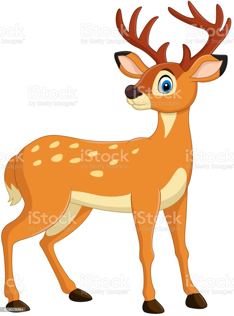 royalty free deer buck white tail clip art vector images rh istockphoto com deer clip art printable deer clip art pictures