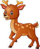 Vector illustration of Cute deer cartoon