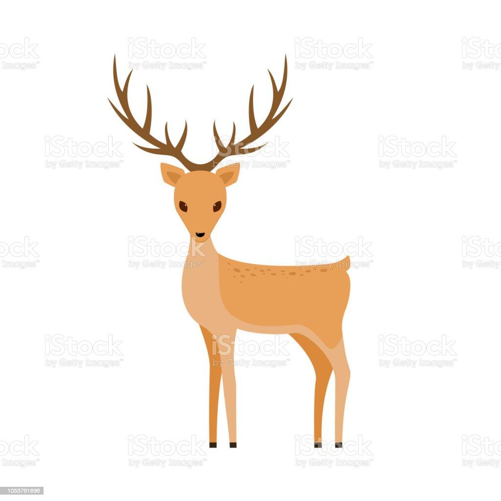 Cute Deer Stock Illustration Download Image Now Istock
