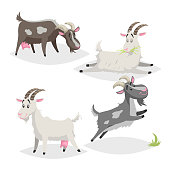 Cute different colors and breeds goats. Cartoon flat style farm animals collection. Eating, sleeping, standing and jumping goats. Vector illustration isolated on white background. EPS10 + JPEG preview.