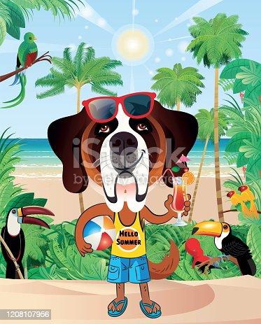 istock Cute dog at the beach. 1208107956