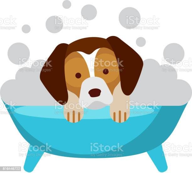 Cute dog bathing in the tub vector id816446722?b=1&k=6&m=816446722&s=612x612&h=xslwafmcj4tdpagjjyesp47tu2vyqhbq hg msxi7ji=