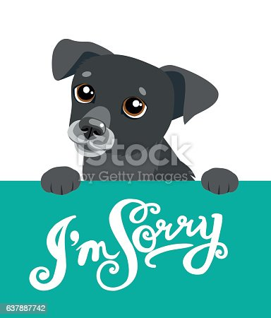 istock Cute Dog Holding A Board With The Text  I'm Sorry. 637887742