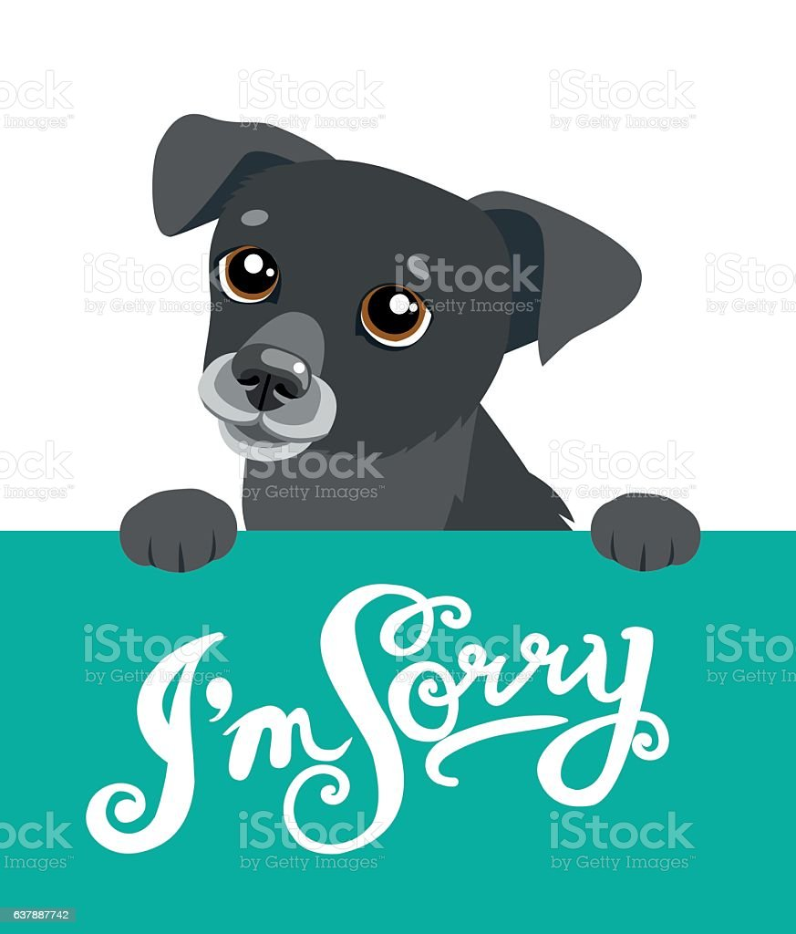 Cute Dog Holding A Board With The Text  I'm Sorry. vector art illustration