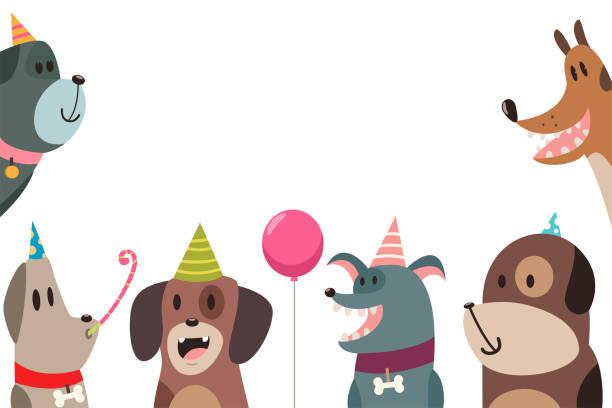 bildbanksillustrationer, clip art samt tecknat material och ikoner med söt hund i partyhattar. vector roliga seriefigurer husdjur isolerad på vit bakgrund. mall för utformning av kort för födelsedag och helgdagar. - valp