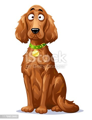 Vector illustration of a cute dog, an Irish Setter with a beautiful long brown fur, looking at the camera, isolated on white.